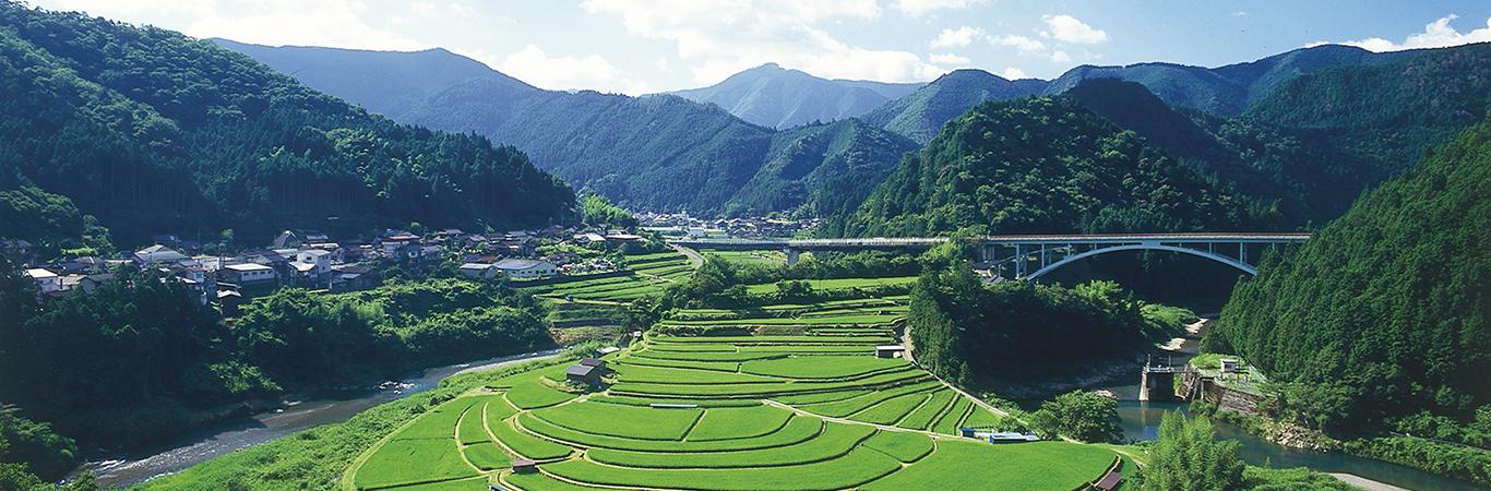 蘭島及び三田・清水の農山村景観