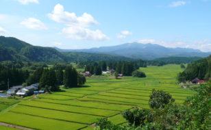 慈恵塚からの眺め